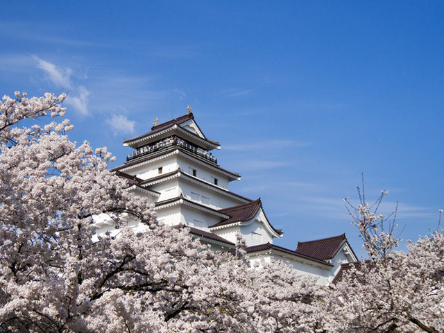 Chiêm ngưỡng 11 tòa lâu đài lộng lẫy nhất Nhật Bản - Ảnh 3.