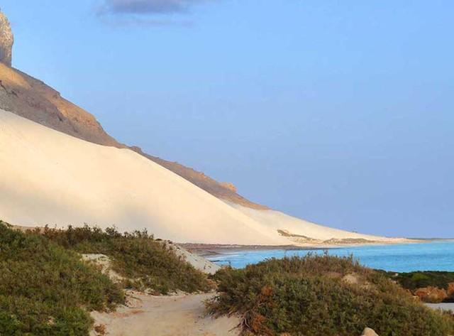 Khám phá Socotra - Hòn đảo được ví như hành tinh khác trên Trái đất - Ảnh 16.