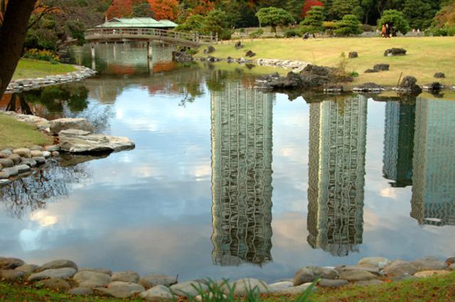 Cảnh sắc mùa thu với lá vàng, lá đỏ đẹp như tranh vẽ ở Tokyo - Ảnh 4.
