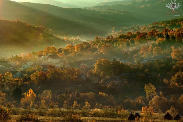 Những khuôn hình đắt giá của mùa thu Romania từ máy ảnh rẻ tiền - Ảnh 13.