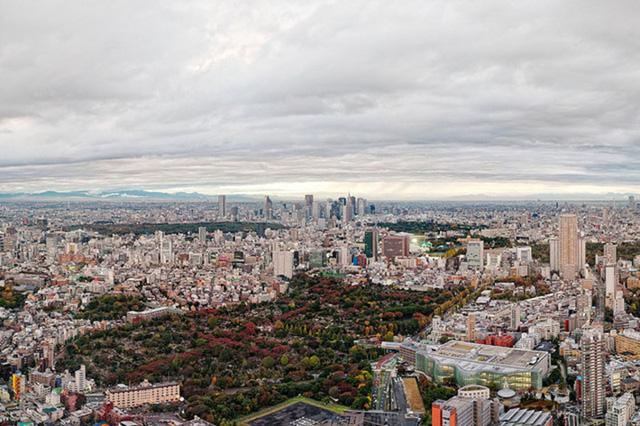 Cảnh sắc mùa thu với lá vàng, lá đỏ đẹp như tranh vẽ ở Tokyo - Ảnh 5.