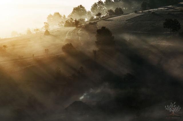 Những khuôn hình đắt giá của mùa thu Romania từ máy ảnh rẻ tiền - Ảnh 14.
