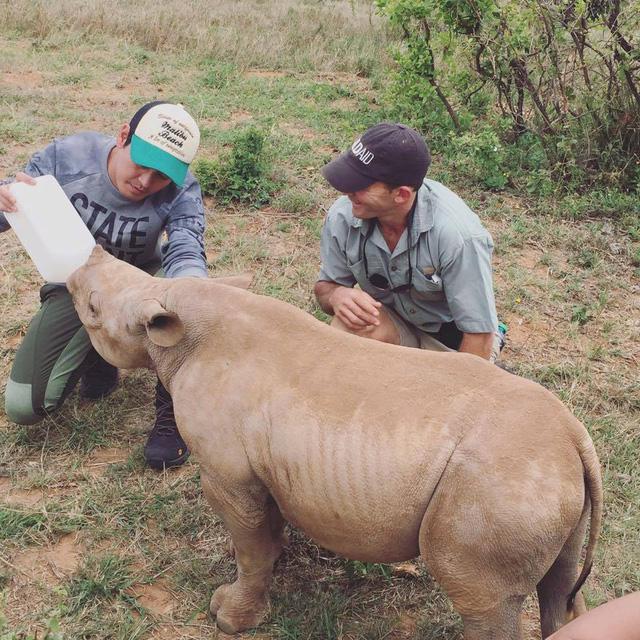 MC Phan Anh xuống tóc, kêu gọi bảo vệ động vật hoang dã - Ảnh 3.