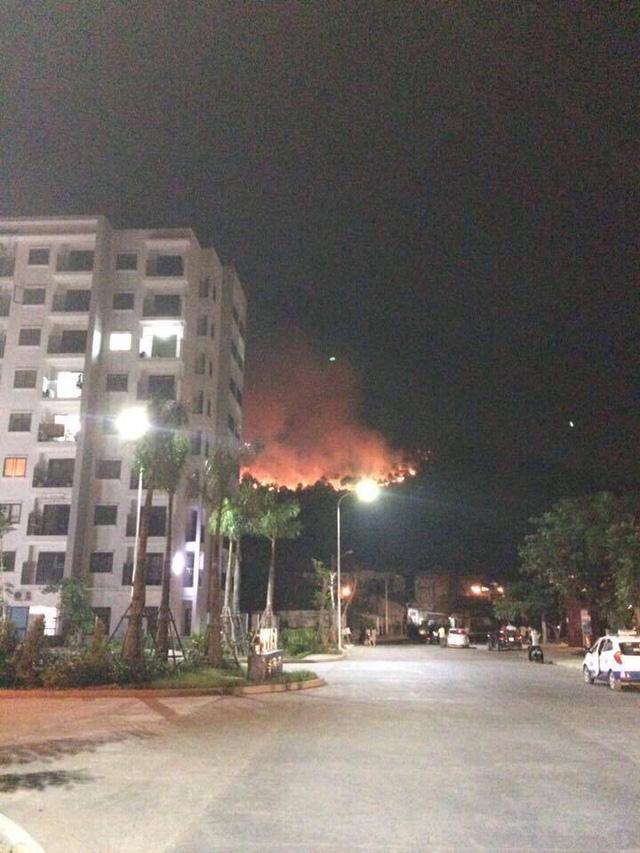 6 hecta rừng cháy rụi trong đêm tại Quảng Ninh - Ảnh 1.