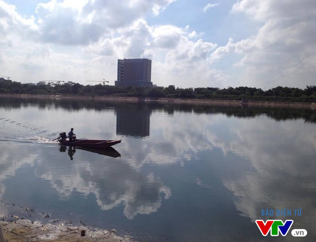 Cá chết tại Hồ Linh Đàm không phải là hiện tượng quá bất thường - Ảnh 1.