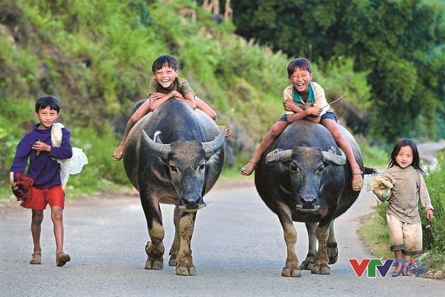 Những khoảnh khắc đầy cảm xúc trong triển lãm ảnh Nụ cười Việt Nam - Ảnh 6.