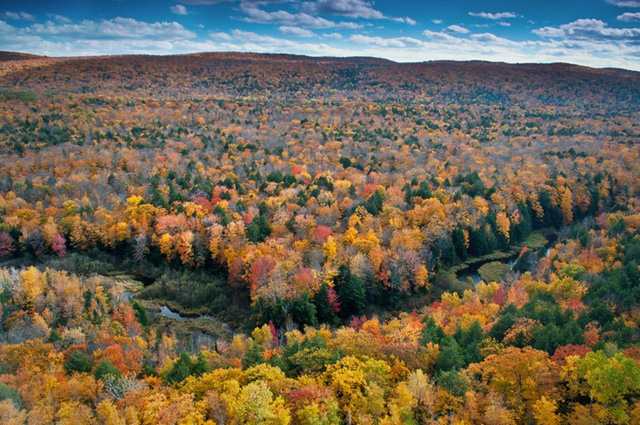 Những vùng đất có mùa thu đẹp nhất nước Mỹ - Ảnh 10.