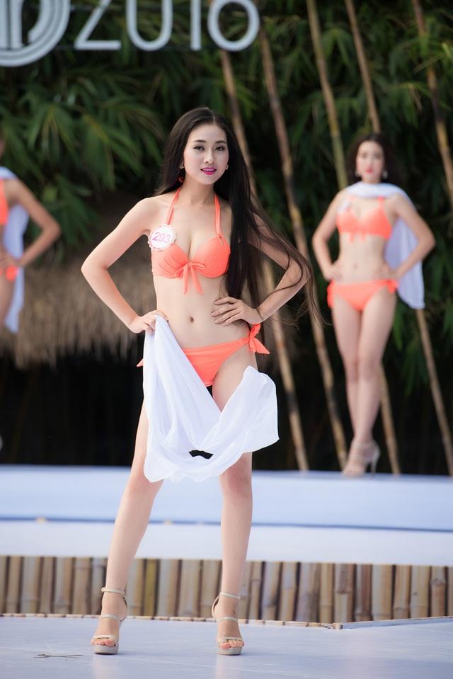 6 gương mặt được kỳ vọng làm nên chuyện tại CK Hoa hậu Việt Nam 2016 - Ảnh 6.