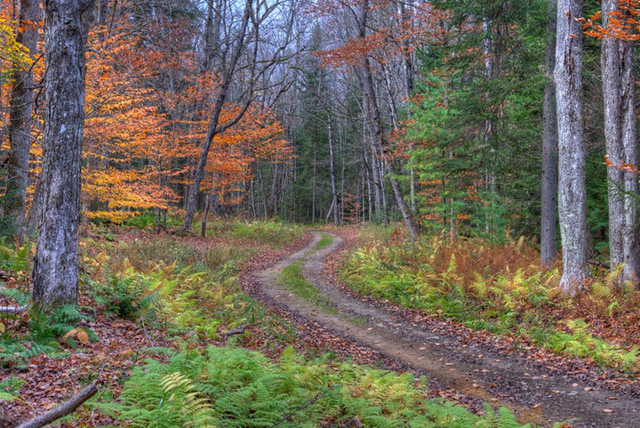 Những vùng đất có mùa thu đẹp nhất nước Mỹ - Ảnh 12.