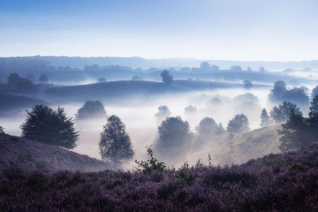 Đắm mình trong buổi sáng mùa Thu đẹp thần tiên ở Hà Lan - Ảnh 3.