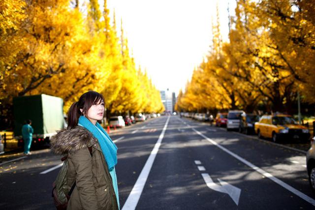 Cảnh sắc mùa thu với lá vàng, lá đỏ đẹp như tranh vẽ ở Tokyo - Ảnh 7.