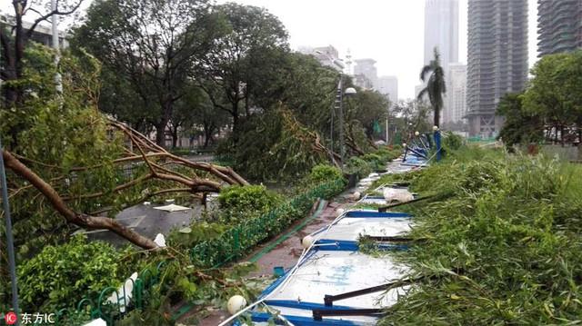 Ít nhất 7 người thiệt mạng do siêu bão Meranti tại tỉnh Phúc Kiến (Trung Quốc) - Ảnh 2.