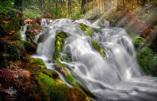 Những khuôn hình đắt giá của mùa thu Romania từ máy ảnh rẻ tiền - Ảnh 2.