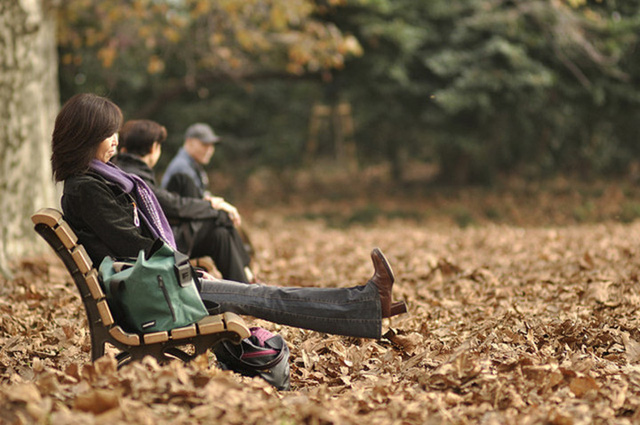 Cảnh sắc mùa thu với lá vàng, lá đỏ đẹp như tranh vẽ ở Tokyo - Ảnh 8.