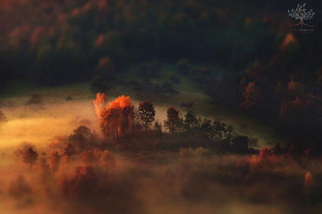 Những khuôn hình đắt giá của mùa thu Romania từ máy ảnh rẻ tiền - Ảnh 3.