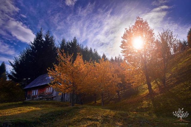 Những khuôn hình đắt giá của mùa thu Romania từ máy ảnh rẻ tiền - Ảnh 4.