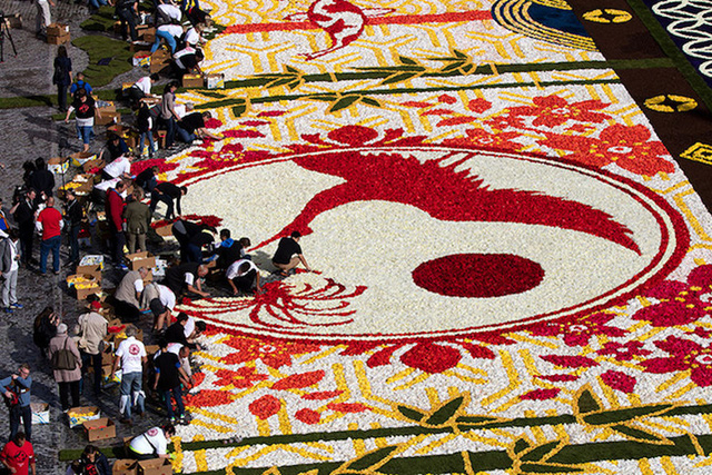 Choáng ngợp với 600.000 bông hoa tạo nên thảm hoa khổng lồ ở Bỉ - Ảnh 6.