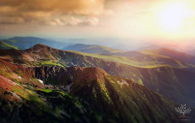 Những khuôn hình đắt giá của mùa thu Romania từ máy ảnh rẻ tiền - Ảnh 6.