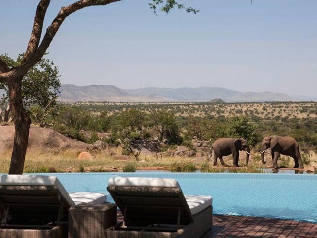 Những khách sạn có hồ bơi ấn tượng nhất hành tinh - Ảnh 9.