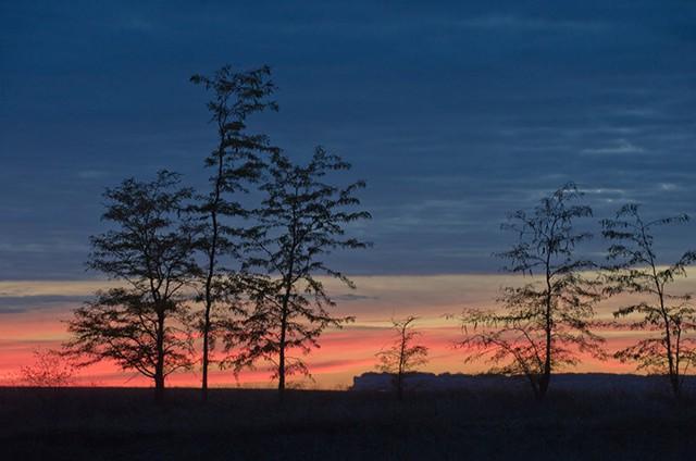 Ngắm khung cảnh mùa Thu đẹp như cổ tích ở Crimea - Ảnh 7.