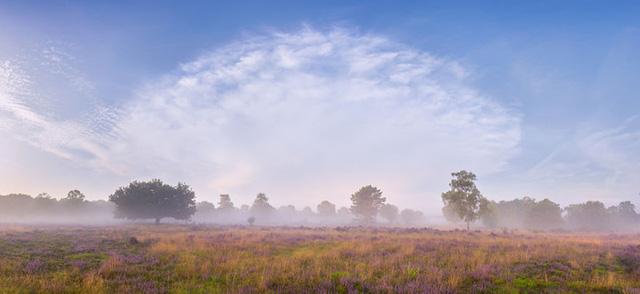 Đắm mình trong buổi sáng mùa Thu đẹp thần tiên ở Hà Lan - Ảnh 7.