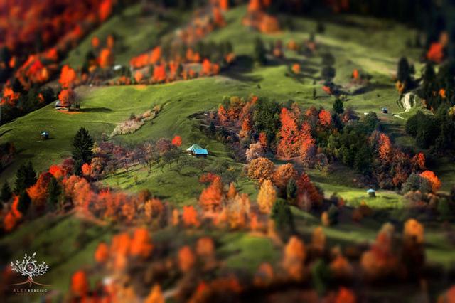 Những khuôn hình đắt giá của mùa thu Romania từ máy ảnh rẻ tiền - Ảnh 8.