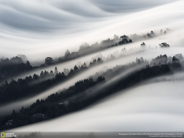 Tròn mắt ảnh thiên nhiên ấn tượng của National Geographic năm 2016 - Ảnh 6.