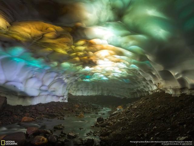 Tròn mắt ảnh thiên nhiên ấn tượng của National Geographic năm 2016 - Ảnh 21.