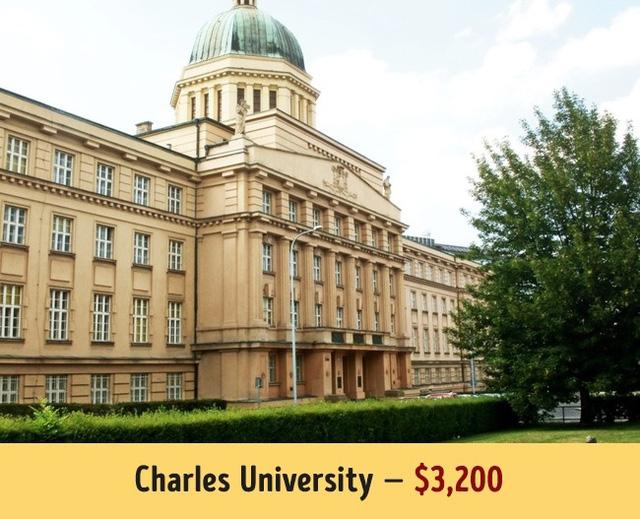 Mức học phí của các trường đại học hàng đầu thế giới - Ảnh 12.