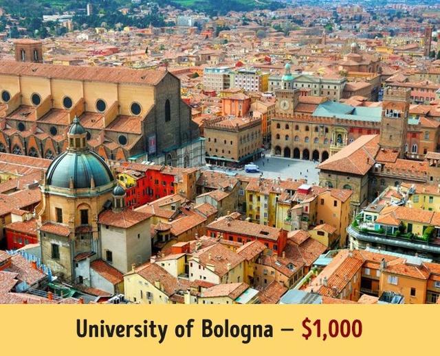 Mức học phí của các trường đại học hàng đầu thế giới - Ảnh 13.