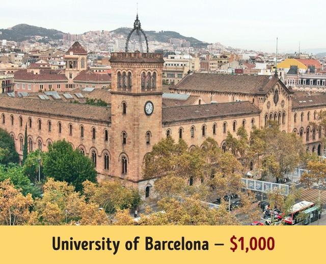 Mức học phí của các trường đại học hàng đầu thế giới - Ảnh 14.