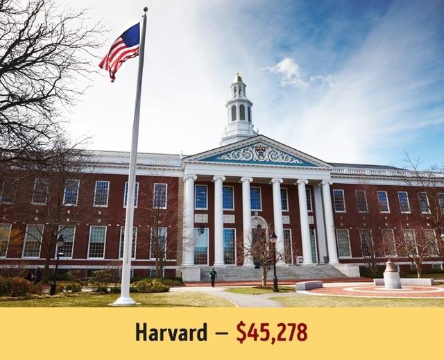 Mức học phí của các trường đại học hàng đầu thế giới - Ảnh 2.