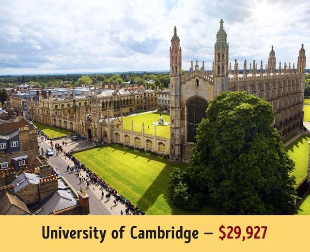 Mức học phí của các trường đại học hàng đầu thế giới - Ảnh 3.