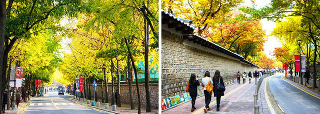 Tuyệt đẹp khung cảnh mùa thu lá đỏ tại Hàn Quốc - Ảnh 7.