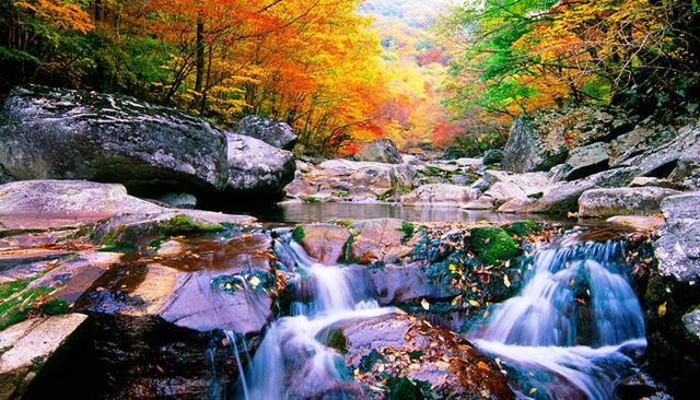 Tuyệt đẹp khung cảnh mùa thu lá đỏ tại Hàn Quốc - Ảnh 14.
