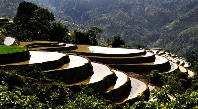 Ruộng bậc thang Việt Nam vào danh sách cảnh quan đẹp đến khó tin - Ảnh 3.