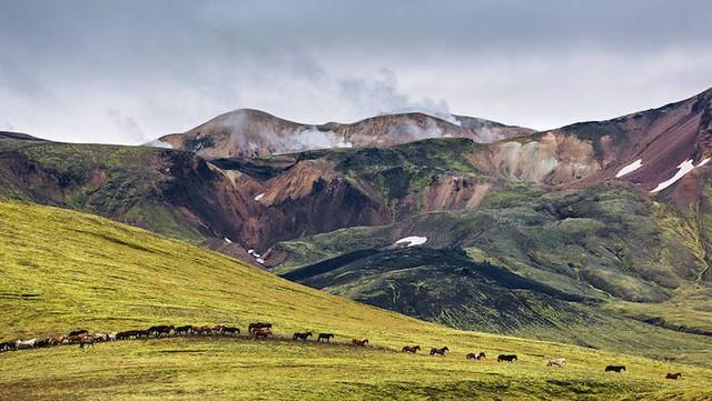 Ấn tượng trước quang cảnh đẹp như tranh vẽ ở Iceland - Ảnh 8.