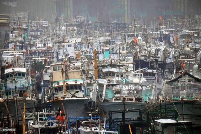 Bão Malakas đổ bộ Đài Loan (Trung Quốc) gây rối loạn giao thông - Ảnh 3.