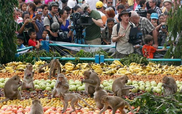 Tiệc buffet dành cho... khỉ ở Thái Lan - Ảnh 3.