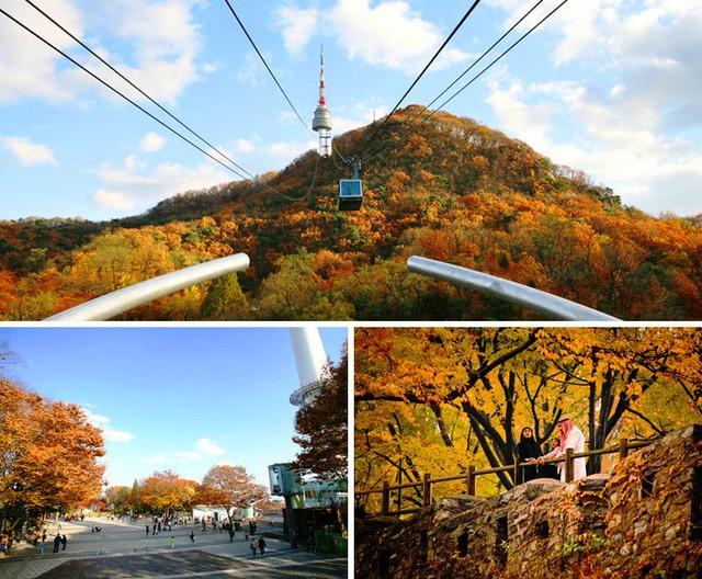 Tuyệt đẹp khung cảnh mùa thu lá đỏ tại Hàn Quốc - Ảnh 4.