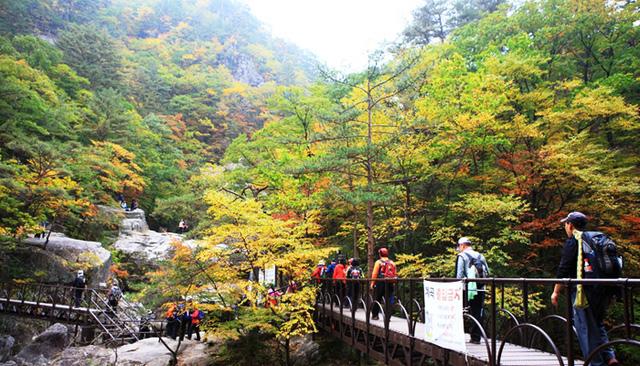 Tuyệt đẹp khung cảnh mùa thu lá đỏ tại Hàn Quốc - Ảnh 10.