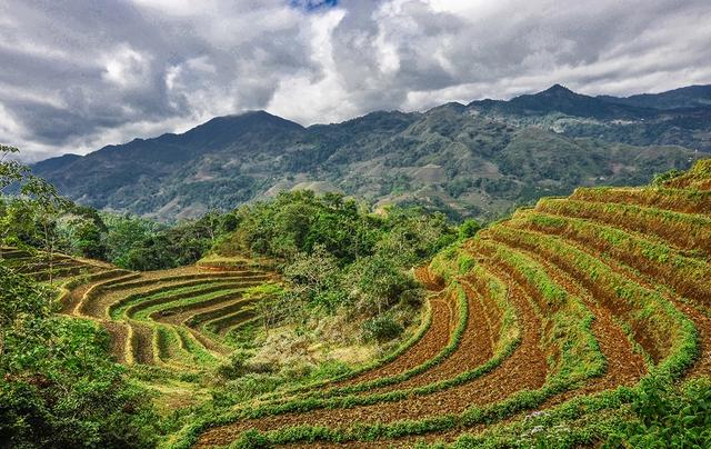 Thiên nhiên Việt Nam đẹp huyền ảo qua ống kính của 9x mê du lịch - Ảnh 7.