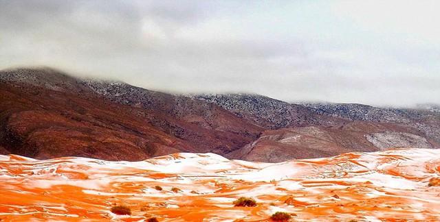 Chuyện thật khó tin: Tuyết rơi ở sa mạc Sahara - Ảnh 8.