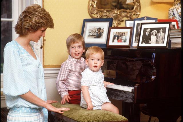 Những bức ảnh rất đẹp về Công nương Diana mà bạn có thể chưa biết - Ảnh 16.