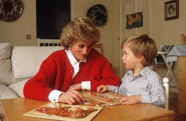 Những bức ảnh rất đẹp về Công nương Diana mà bạn có thể chưa biết - Ảnh 12.