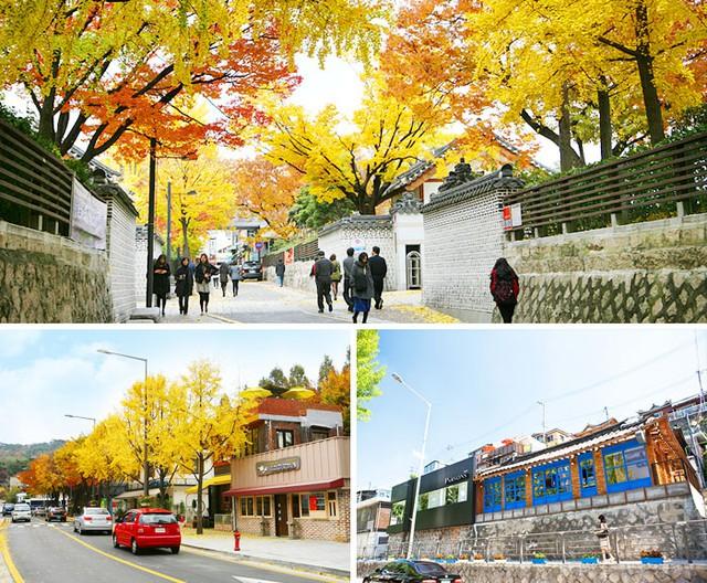 Tuyệt đẹp khung cảnh mùa thu lá đỏ tại Hàn Quốc - Ảnh 9.
