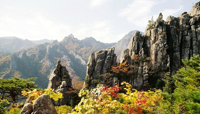 Tuyệt đẹp khung cảnh mùa thu lá đỏ tại Hàn Quốc - Ảnh 8.