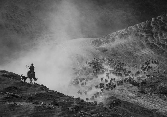 Ảnh chụp ở Việt Nam lọt top những bức ảnh ấn tượng năm 2016 - Ảnh 43.