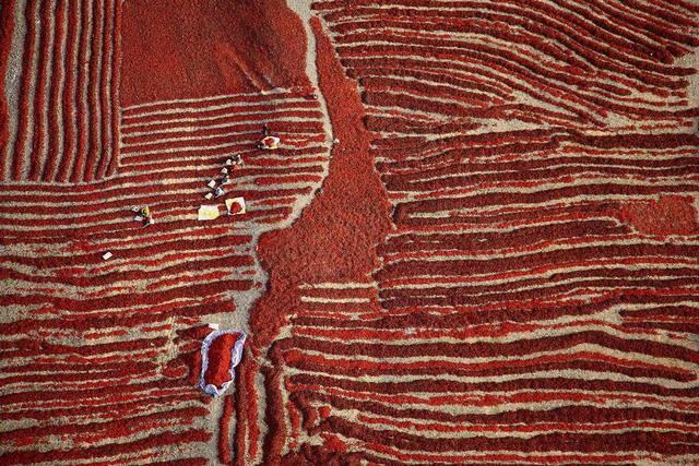 Ảnh chụp ở Việt Nam lọt top những bức ảnh ấn tượng năm 2016 - Ảnh 36.