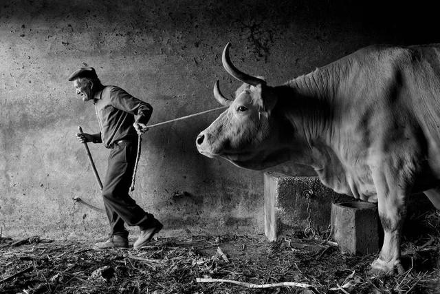 Ảnh chụp ở Việt Nam lọt top những bức ảnh ấn tượng năm 2016 - Ảnh 29.